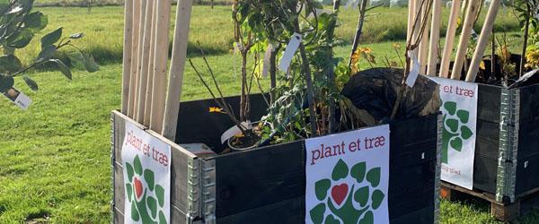 Lokale børnehaver modtager frugtplantager ….
