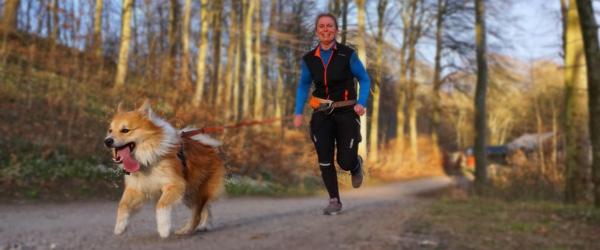 Løb med din hund i Elling Plantage på lørdag